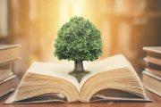 حکمت ، معنایی نهفته در جامعه فرهنگی